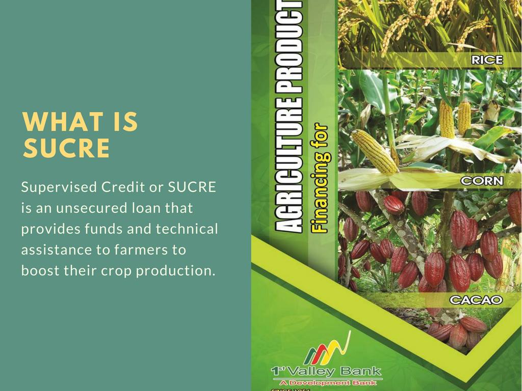 Sucre Loan